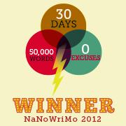 Banner NaNoWriMo-Winner