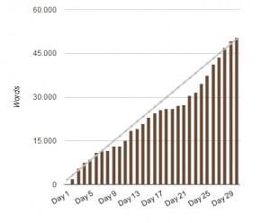 NaNoWriMo 2012 - Statistik